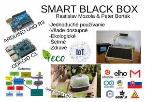 SBB (Smart Black Box)