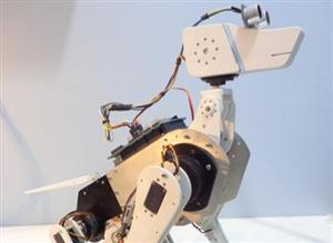 DIY Robot Dog