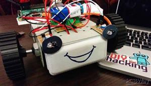 raspberry pi bot