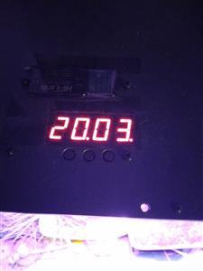 Plant lamp timer