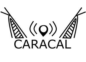 Caracal Evo