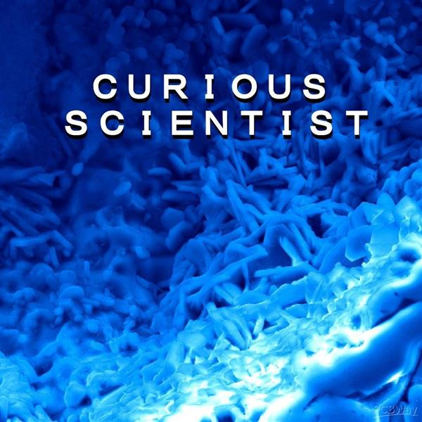 Curious Scientist
