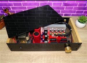 Audiophile Amplifier LM1875 Paralel