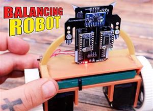 Mini Balancing Robot